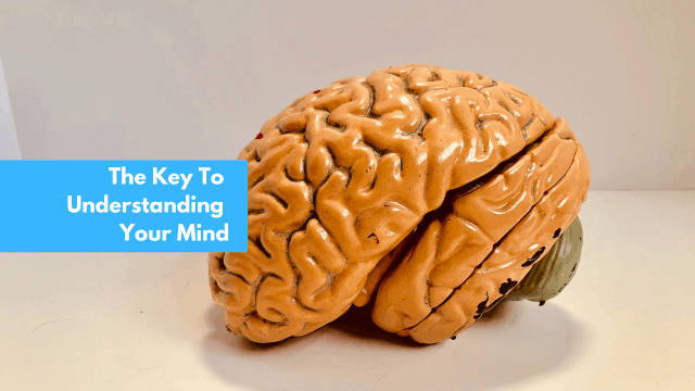 The key to understanding your mind